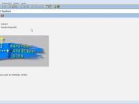 SAP BASIS / ABAP – Como Exportar e Importar uma Change Request Externa
